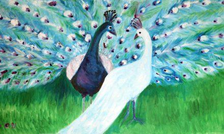 Peacocks Oil on Canvas
